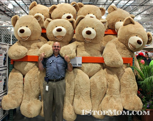 costco teddy bears