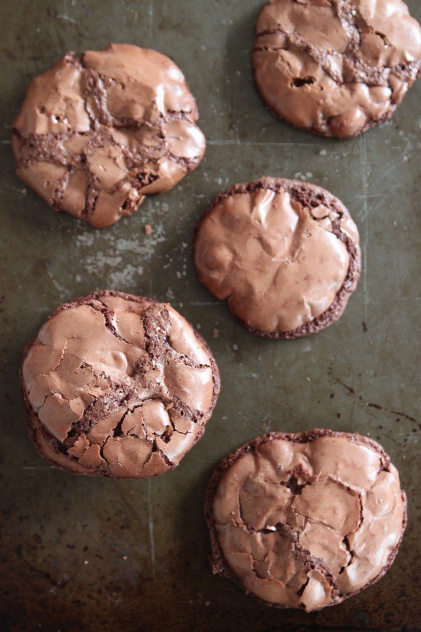 Coffee cocoa crinkle cookies recipe