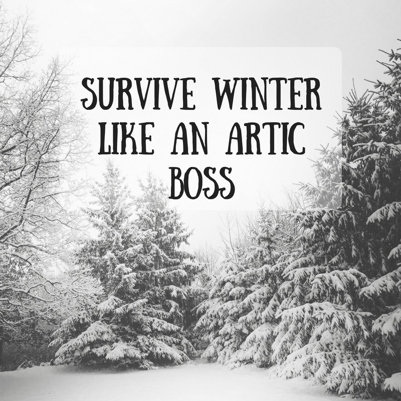 survive winter like an artic boss