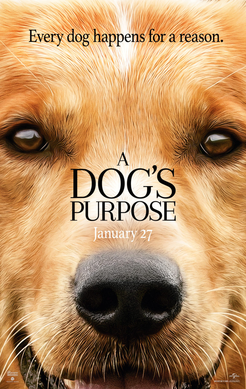 a dogs purpose giveaway